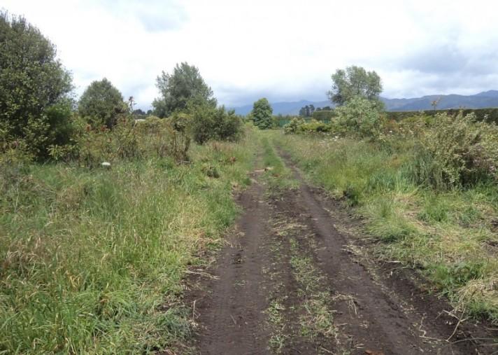 175 Tuapiro Road, Katikati