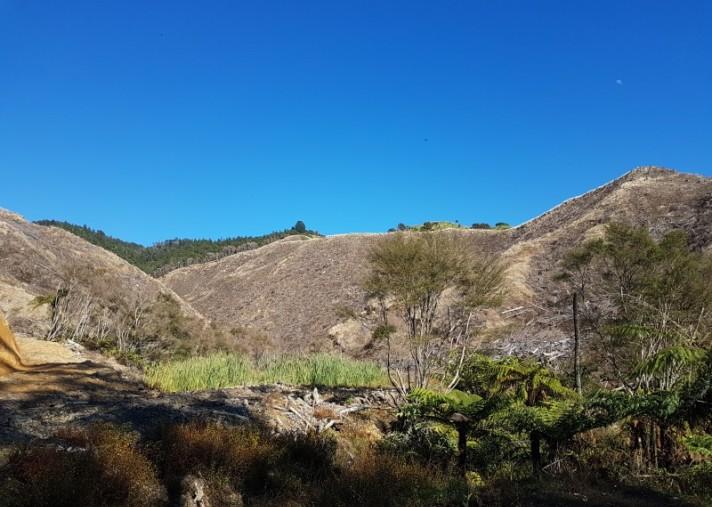 Otara Road, Opotiki