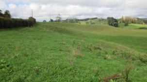 Old Highway, Whakamarama