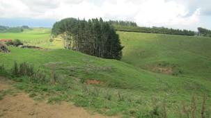 568, 590, 592 and 59 Mangorei Road, Mangorei