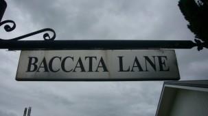 1 Baccata Lane, Dannevirke